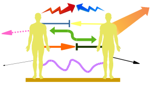 Paardynamik, wie sie in der Paartherapie sichtbar werden kann.